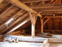 Průzkum dřevěných konstrukcí
